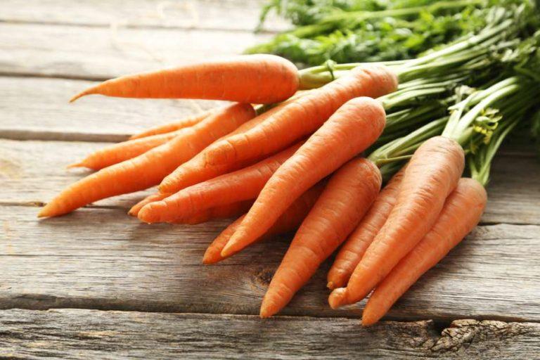 ¡A comer zanahoria! Descubre los beneficios de esta hortaliza para la salud